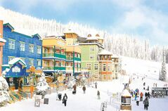 The Silver Star Mountain Resort, a quaint and cosy car-free skiing village, is located in the hart of the  Okananagan Valley