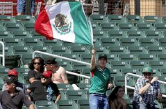 A fan waves the Mexican flag during the second inning of a World Baseball Classic baseball game between Mexico and Italy, Thursday, March 7, 2013, at Salt River Fields in Scottsdale, Ariz. (AP Photo/Matt York)