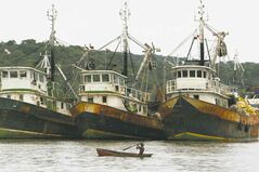 A man paddles past fishing boats anchored in Puerto Caimito, Panama, some 28 kilometers west of Panama City. (AP Photo/