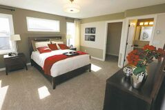 The master suite is finished in designer colours with a taupe feature wall behind the bed.