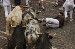 A reveler falls as a Torrestrella fighting bulls run during the running of the bulls of the San Fermin festival, in Pamplona, Spain, Monday, July 7, 2014. Revelers from around the world arrive to Pamplona every year to take part on some of the eight days of the running of the bulls glorified by Ernest Hemingway's 1926 novel