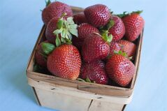 A basket of strawberries is shown in Concord, N.H., April 28, 2014. Fruits of the season are ripe for the picking, but how can you tell if they have reached their sweet spot? THE CANADIAN PRESS/AP/Matthew Mead