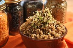 Brown rice and lentils. THE CANADIAN PRESS/HO