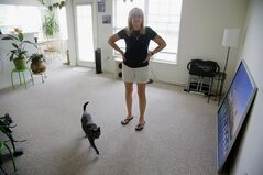 Julie Pemberton stands in the living room of her apartment as her cat Pewter walks through, Thursday, June 26, 2014, in Weymouth, Mass. Pemberton works more than 40 hours a week during the academic year. That gave her access to health care on the job until her employer changed the rules ahead of new coverage requirements under President Barack Obama's health care law. The workers, their union, and even some college administrators, say the government appears to have unwittingly created a loophole that's hurting employees the law was intended to help. (AP Photo Stephan Savoia)