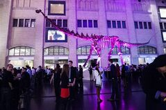 People attend the Royal Ontario Museum's Friday Night Live event in Toronto on Friday, November 30, 2012. For one evening a week, the hallowed halls of one of Canada's largest museums shake off the mantle of formality with a party that blends the buzz of a bar with the nerdy thrill of rare fossils, ancient suits of armour and other artifacts. The adults-only celebrations are the latest effort by museum officials to lure young professionals with the most basic bait: music, food and, of course, alcohol. THE CANADIAN PRESS/Michelle Siu