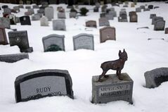 FILE - In this Jan.19, 2011 file photo, headstones marking the graves of pets are spread throughout the Hartsdale Pet Cemetery in Hartsdale, N.Y. The New York State Cemetery Board has proposed regulations that will once again permit pet owners to have their ashes interred with their beloved animals in pet cemeteries. (AP Photo/Seth Wenig, File)