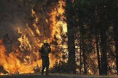 FILE - This Aug. 25, 2013 file photo shows firefighter A.J. Tevis watching the flames of the Rim Fire near Yosemite National Park, Calif. The House has approved a wide-ranging bill that speeds logging of trees burned in last year's massive Rim Fire in California. The measure also allows vehicular access to North Carolina's Cape Hatteras National Seashore, extends livestock grazing permits on federal land in the West and lifts longstanding restrictions on canoes, rafts and other