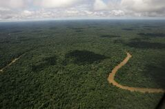 FILE - In this May 17, 2007, file photo, An aerial view of the Yasuni National Park, in Ecuador's northeastern jungle. Ecuador's electoral council on Tuesday May, 6. 2014, rejected as insufficient a petition drive calling for voters to decide whether to proceed with oil drilling in a pristine Amazon nature reserve as planned by President Rafael Correa. (AP Photo/Dolores Ochoa, File)