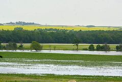 Charles Tweed / Brandon Sun archives