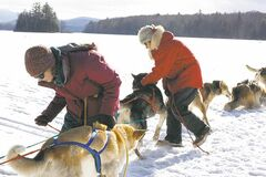 Cori Shooter, left, and Polly Mahoney harness a team of dogs in preparation to return to Mahoosuc Mountain Lodge on the final day of a weekend dog-sledding trip in Upton, Maine, last winter.