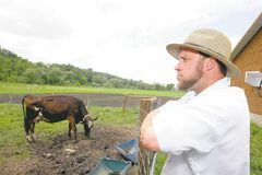 Kyle McDaniel / the associated press