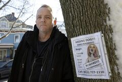 Author Dennis Lehane stands next to a poster for his missing dog in Brookline, Mass., Thursday, Jan. 3, 2013. The dog, a beagle named Tessa, went missing on Christmas Eve 2012. (AP Photo/Steven Senne)