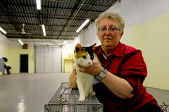 Craig Street Cats founder Lynne Scott secured this warehouse space on Madison Street in early March. She hopes to move her organization into the space sometime in May.