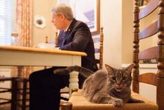 'Had breakfast with Stanley,' @pmharper Tweeted this morning with this photo.