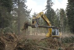 FILE - In this Sept. 25, 2013, file photo an excavator removes trees that were bulldozed for a firebreak in the battle against Rim Fire along Dodge Ridge in the Stanislaus National Forest, near Tuolumne City, Calif. Wildlife advocates on Wednesday, Sept. 3, 2014, plan to sue the U.S. Forest Service, attempting to block part of a recently unveiled plan for logging trees burned last year in the massive Sierra Nevada wildfire. The Center for Biological Diversity argues that federal forestry officials have ignored science showing that the California spotted owl population has soared since the Rim Fire scorched 400 square miles. (AP Photo/Rich Pedroncelli, File)