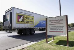FILE - This Oct. 10, 2013 file photo shows a truck entering the Foster Farms processing plant in Livingston, Calif. An outbreak of antibiotic-resistant salmonella linked to a California chicken company is ongoing after more than a year, with 50 new illnesses in the last two months and 574 sickened since March 2013. The federal Centers for Disease Control and Prevention says there are about eight new salmonella illnesses linked to the outbreak a week, most of them in California. So far, there has been no recall of Foster Farms chicken. (AP Photo/Rich Pedroncelli, File)
