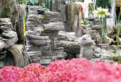 Ruth Bonneville / Winnipeg Free Press 