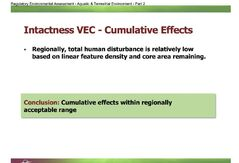 Cumulative effects