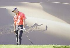 Tiger Woods from the U.S. reacts in front of a camel caravan billboard on the 15th hole during the final round of Abu Dhabi HSBC Championship, Sunday, Jan. 29, 2012 in Abu Dhabi, United Arab Emirates. Robert Rock from England won the trophy, Woods taking a shared third place. (AP Photo/Kamran Jebreili)