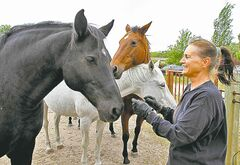 Don Rocan's wife, Betty-Ann, gets ready to feed their horses.