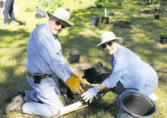 Gord and Jaye Grieef prepare a tree for planting in Henteleff Park.