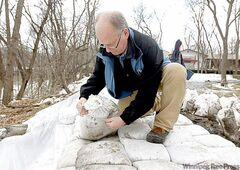 Emergency preparedness co-ordinator Randy Hull inspects a dike in St. Norbert.