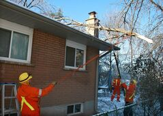 A hydro crew from London, Ont. works to remove fallen branches from a power line at a house in Oakville, Ont., Dec.24, 2013. THE CANADIAN PRESS/Richard Buchan