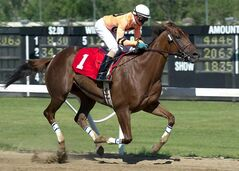 Jockey Trevor Simpson and Golden Stripe cruised to victory in the $30,000 CANSTAR Canada Day Stakes.