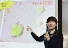 FILE - In this Jan. 28, 2014 file photo, researcher Haruko Obokata, the lead author of a widely heralded stem-cell research paper by the Japanese government-funded laboratory Riken Center for Development Biology, speaks about research results during a news conference in Kobe, western Japan. The scientists who reported in January that they'd found a startlingly simple way to make stem cells have withdrawn that claim, following accusations of falsified data. On Wednesday, July 2, 2014, the journal Nature released a statement from the scientists who acknowledged