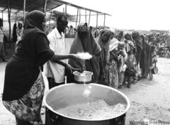 Looking at the future? Somali drought refugees line up for food.