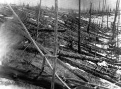 FILE - In this 1953 file photo, trees lie strewn across the Siberian countryside 45 years after a meteorite struck the Earth near Tunguska, Russia. The 1908 explosion is generally estimated to have been about 10 megatons; it leveled some 80 million trees for miles near the impact site. The meteor that streaked across the Russian skyon Friday is estimated to be about 10 tons. It exploded with the power of an atomic bomb over the Ural Mountains, about 5,000 kilometers (3,000 miles) west of Tunguska.