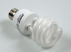A compact fluorescent lightbulb is shown in a file photo. THE CANADIAN PRESS/AP-Donald King