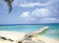 The private dock on Sandy Cay, off of Utila, Honduras, is vacant save for a pelican.