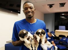 In an image from video provided by the Los Angeles Dodgers, Los Angeles Dodger second baseman Dee Gordon holds puppies used in a video June 17, 2014, at Dodger Stadium in Los Angeles. The video was part of a promotion to get people to vote for baseball players for the All-Star Game in Minneapolis on July 15. (AP Photo/Los Angeles Dodgers)