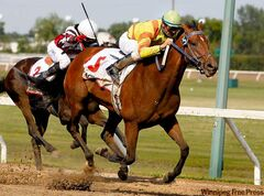 Stachys (right), ridden by jockey Eddie Martin Jr., strides to the Manitoba Lotteries Derby title past Cherokee's Gold Monday at Assiniboia Downs.