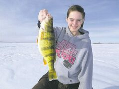 Elle Branfield with a trophy-sized perch. It takes real creativity to catch such big fish in Lake Manitoba this year, perhaps because there is so much natural food in the lake.