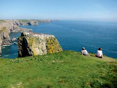 Birdwatchers observe nesting guillemots atop one of the natural pillars known as Stack Rocks on the Pembrokeshire coast. At left, the Green Bridge of Wales