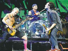 Dario Ayala / Montreal GAZETTE