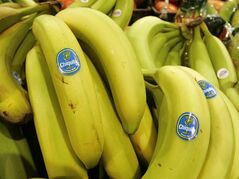 FILE - In this Aug. 3, 2005 file photo, Chiquita bananas are on display at a grocery store in Bainbridge, Ohio. Chiquita Brands on Monday, Aug. 11, 2014 received an approximately $611 million buyout offer from investment firm Safra Group and agribusiness and juice company Cutrale Group. (AP Photo/Amy Sancetta, File)