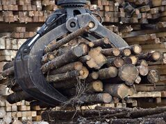 Workers pile logs at a softwood lumber sawmill on Nov. 14, 2008 in Saguenay, Que. THE CANADIAN PRESS/Jacques Boissinot