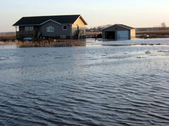 Water surrounds Pat McKenzie's home in the RM of Cornwallis, southeast of Brandon, on Thursday. Overland flooding has forced 22 people in the Westman area to evacuate.