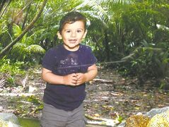 Geo Mounsef, 2, died after an SUV pinned him against a concrete wall on a restaurant patio.