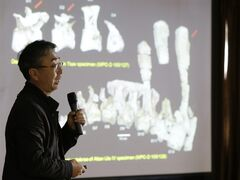 In this photo taken Wednesday, Oct. 22, 2014, study lead author Lee Yuong-nam, director of the Geological Museum, speaks to the media about Deinocheirus mirificus during a news conference in Seoul, South Korea, Wednesday, Oct. 22, 2014. Nearly 50 years ago, scientists found bones of two large, powerful dinosaur arms in Mongolia and figured they had discovered a fearsome critter with killer claws. Now scientists have found the rest of the dinosaur and have new descriptions for it: goofy and weird. That's Deinocheirus mirificus, which means