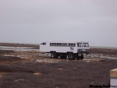 A Tundra Buggy out searching for polar bears.
