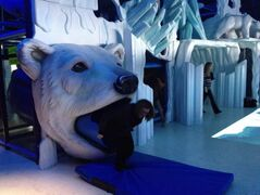 Winnipeg City Councillor Paula Havixbeck tries out the polar bear slide at the new arctic enclosure and interpretive centre at the Assiniboine Park Zoo.