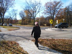 Area resident Joan McConnell crossing Grosvenor Avenue by one of the traffic circles.