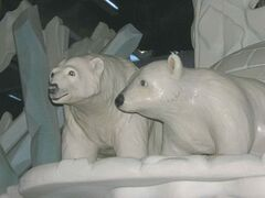 Part of the Journey to Churchill polar bear exhibit at Assiniboine Park Zoo.