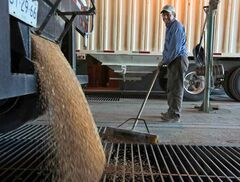 Canadian farmers have been unhappy for months with the slowness of grain transport following record harvests last fall.