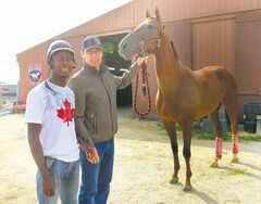 Jockey Tyrone Nelson, left, and trainer Tom Gardipy Jr. spend time with Thunderclap Newman, winner of the last two marathon events in the four-race series.