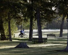 A cyclist rides through Assiniboine Park Tuesday with clear skies and warm temperatures in the forecast for the day.